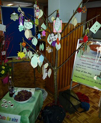 The Bennochy vine at Celebrate and Discover 2014