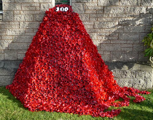 The 100 Year Anniversary World War 1 Poppy Art Installation